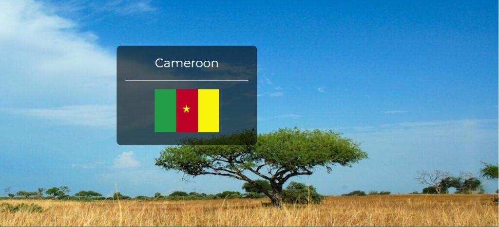 Cameroon Country Flag