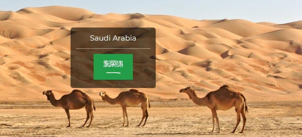 Saudi Arabia Country Flag
