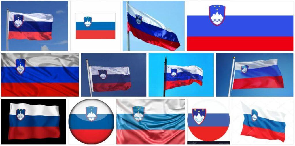 Slovenia Country Flag