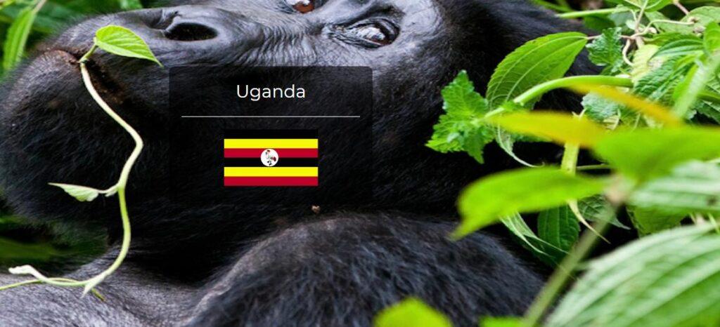 Uganda Country Flag
