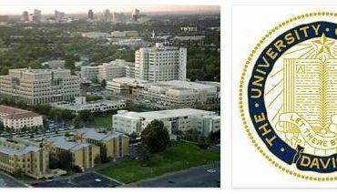 University of California Davis Review