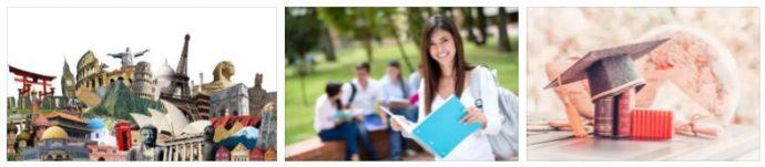 Academic Gap Year