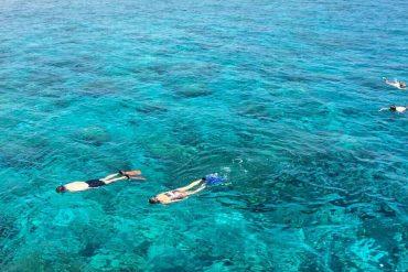 Adventures in The Maldives and Sri Lanka